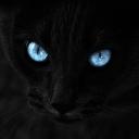 lothin's avatar
