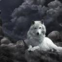 Lonewolf0018's avatar