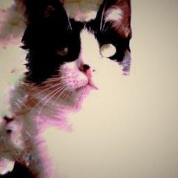 Mpaz's avatar