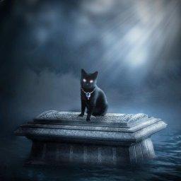 Kittyvamp's avatar