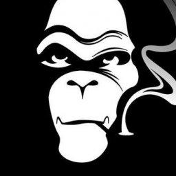 skMonkey's avatar