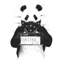 Janja's avatar