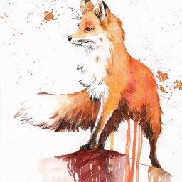 Foxette's avatar