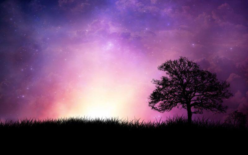 Violet sunset wallpaper