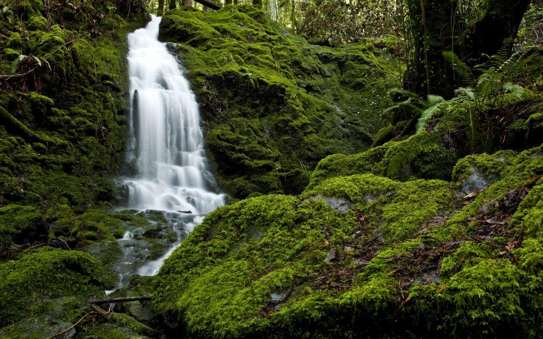 Camp meeker waterfall wallpaper
