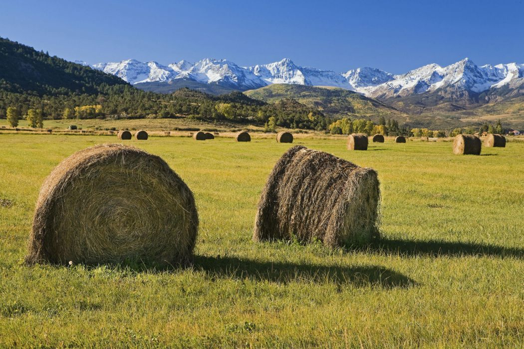 Bales of hay wallpaper