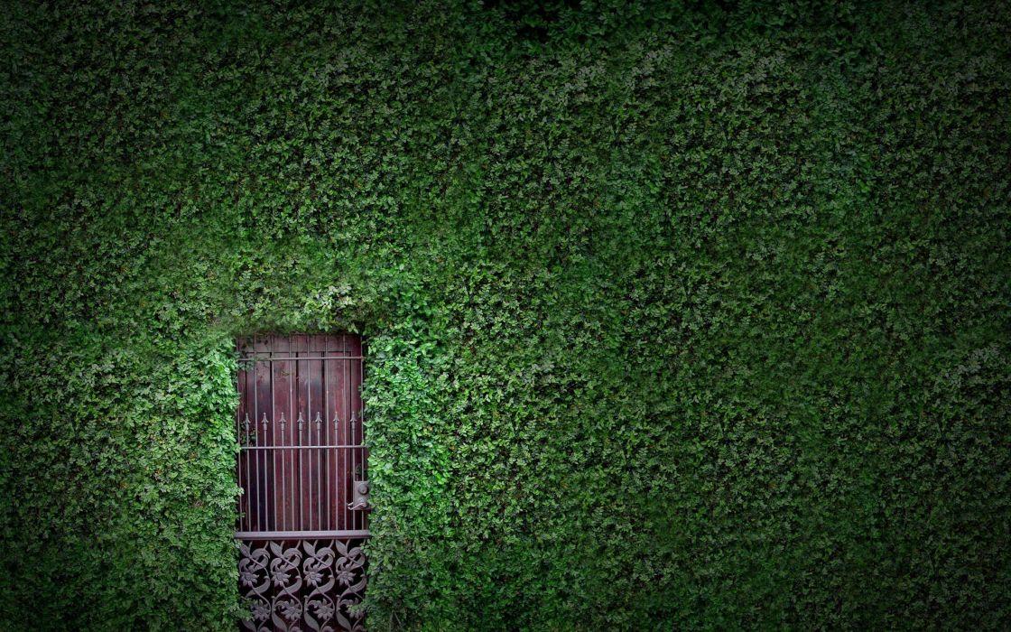 A Door In The Nature Wallpaper