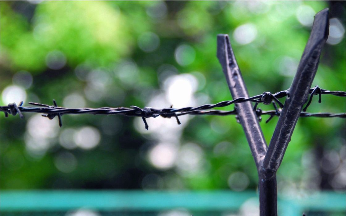 Fence barb wire wallpaper