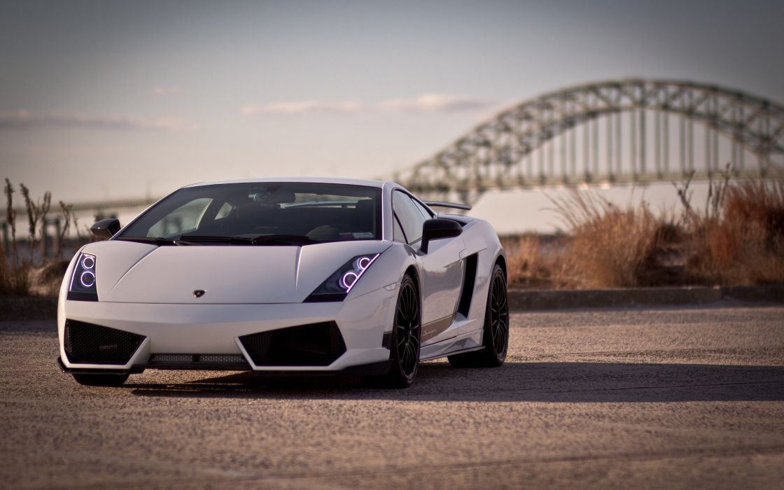 White Lamborghini Gallardo Wallpaper