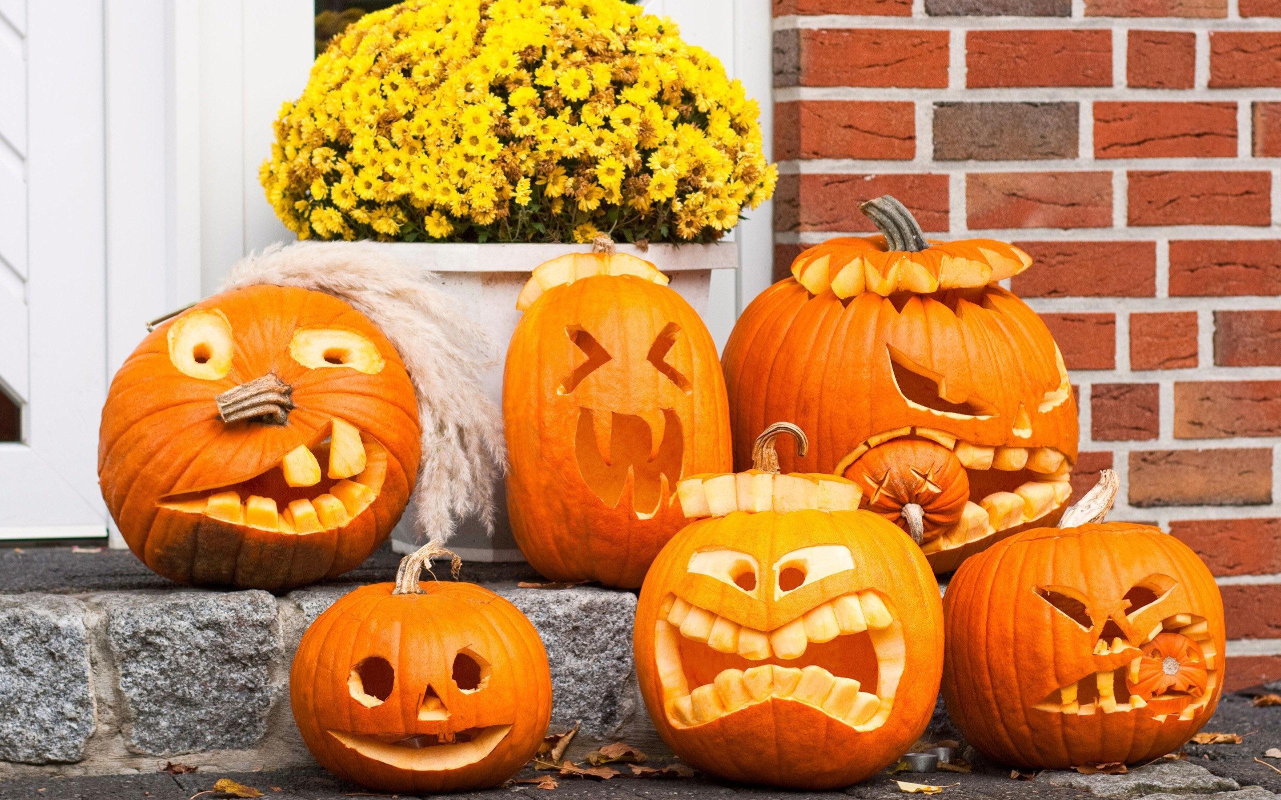 Messages >> Pumpkin funny faces wallpaper | 2560x1600 | 929 | WallpaperUP
