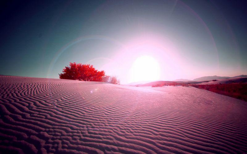 Pink desert wallpaper