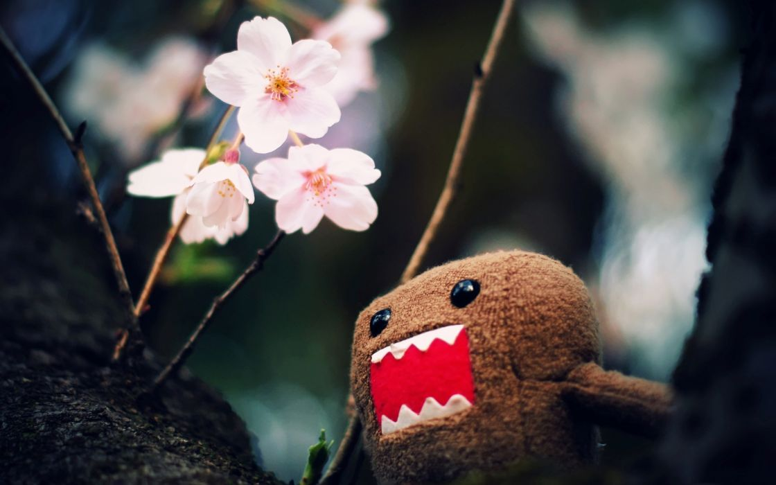 Domo Kun and tree blossoms wallpaper