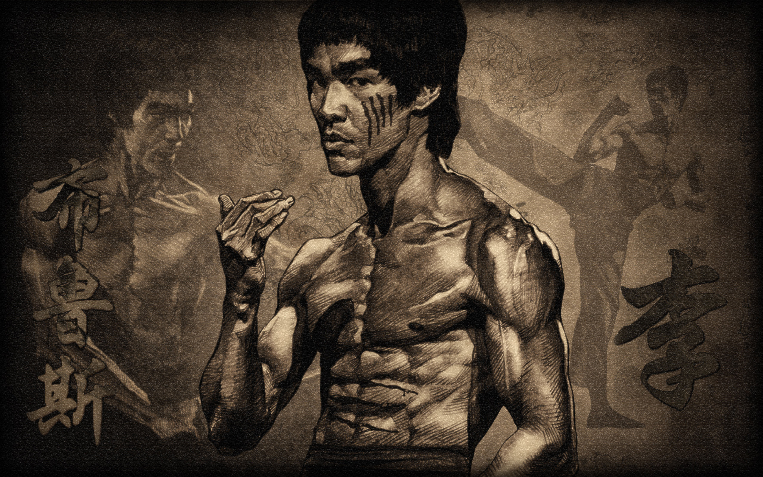 2560x1600 bruce lee desktop - photo #14