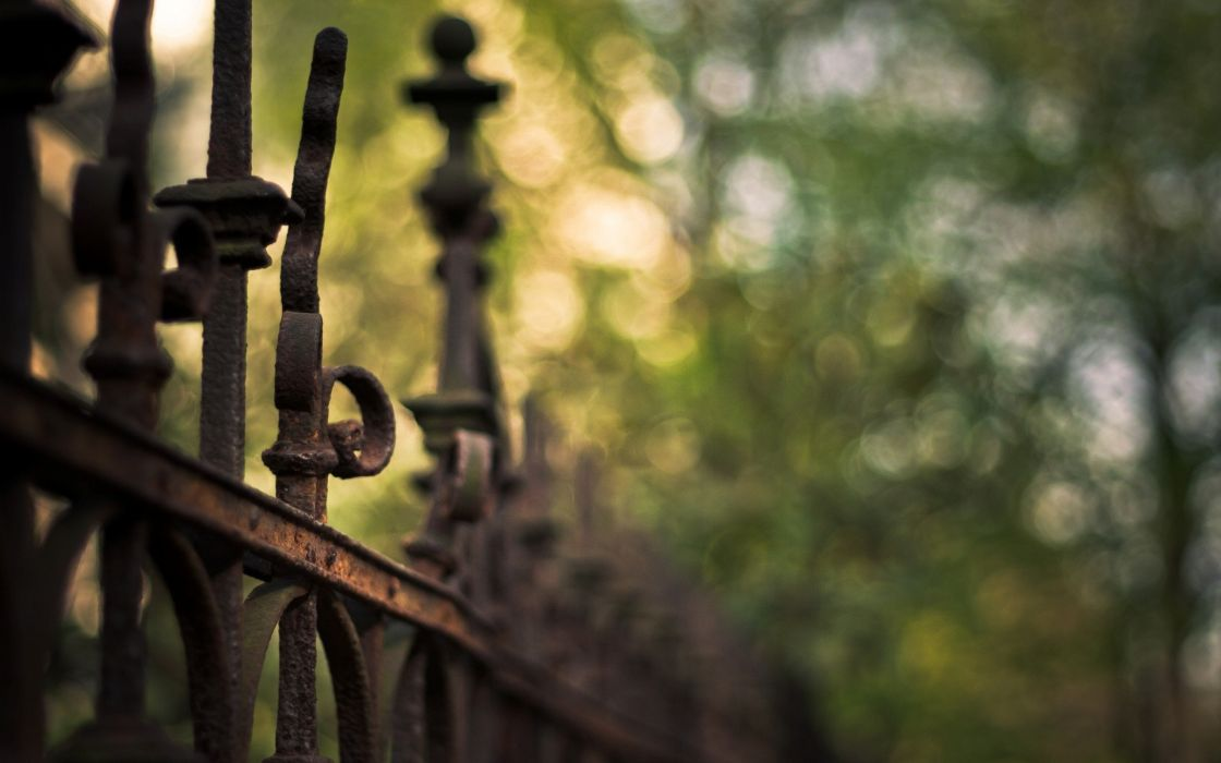 Gate in the nature wallpaper