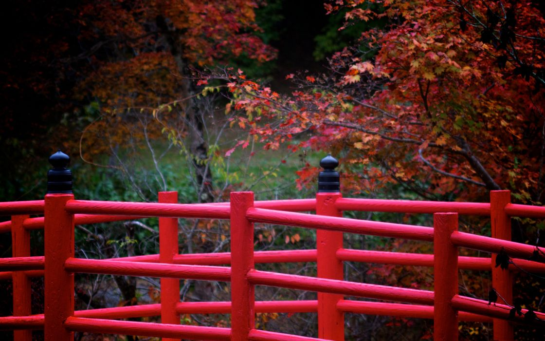 Red japanese bridge wallpaper