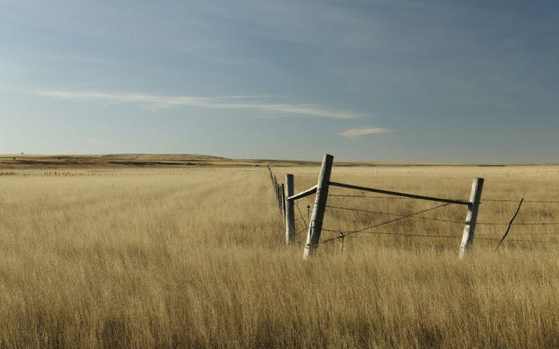 Fence in the field wallpaper