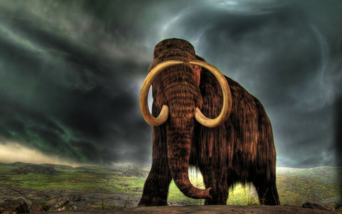 Amazing mammoth wallpaper