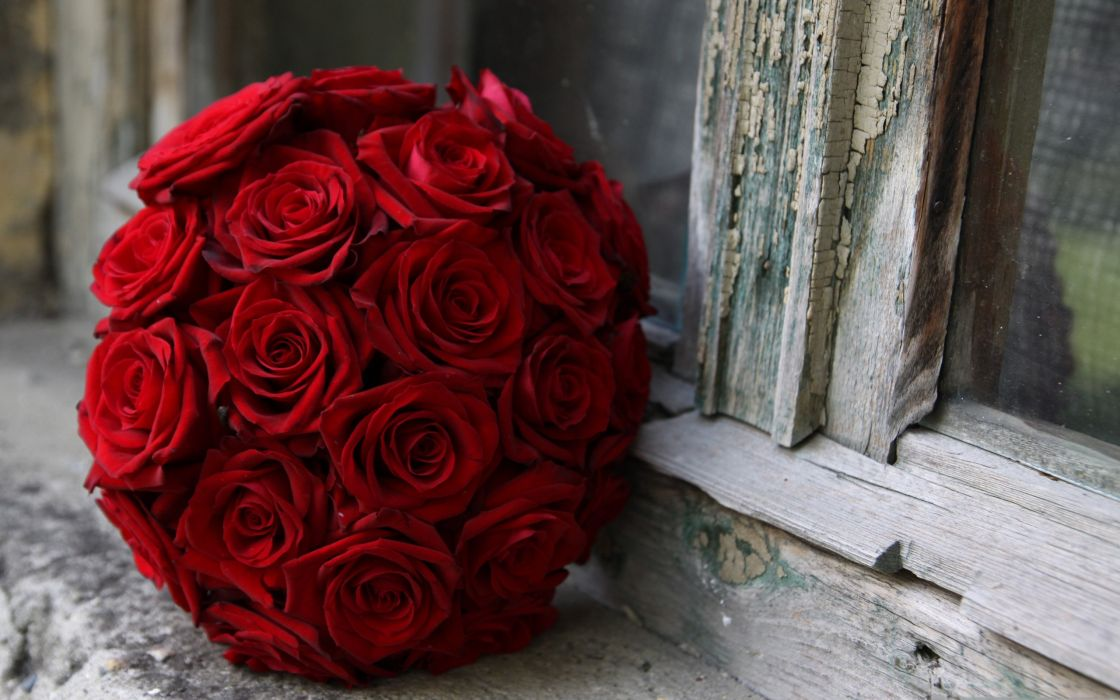 Red roses wedding bouquet wallpaper