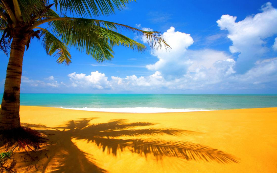 Golden beach wallpaper