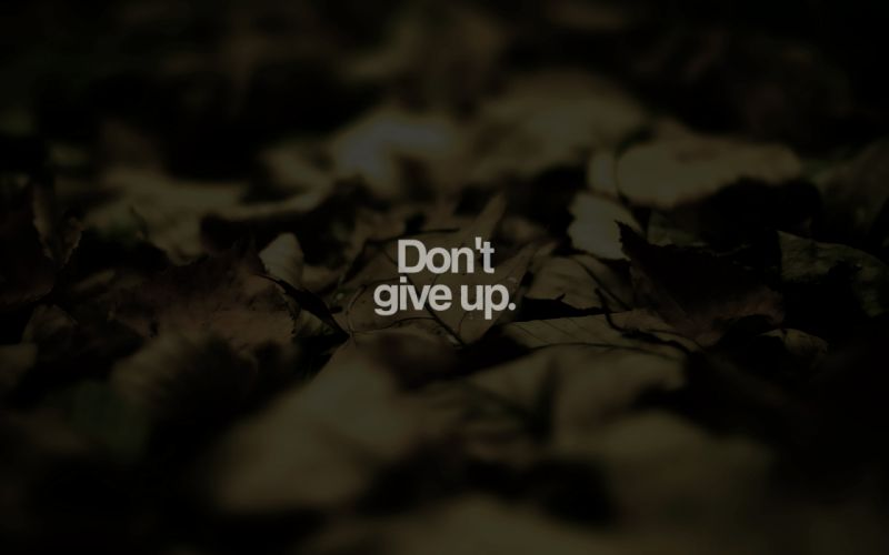 Do not give up wallpaper