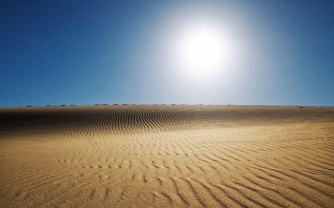 Sunny desert wallpaper
