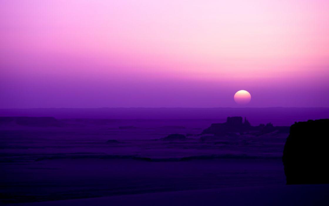 Violet paradise wallpaper