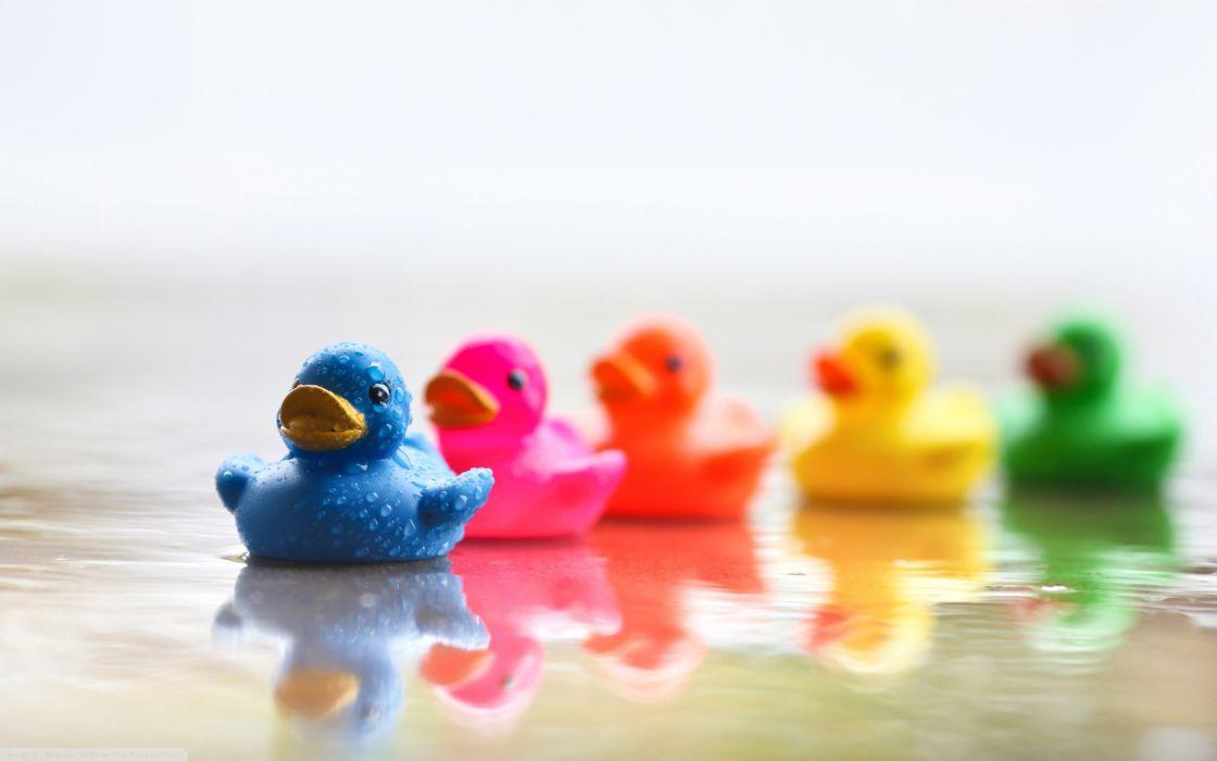 Colored ducks wallpaper