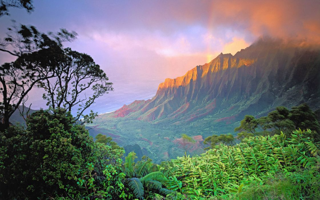 Hawaii nature wallpaper