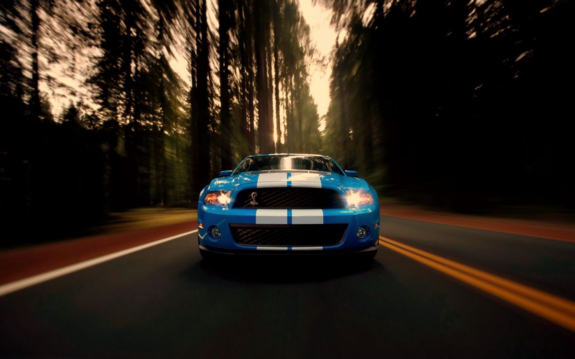 Azule and white Ford Mustang Shelby GT500 wallpaper