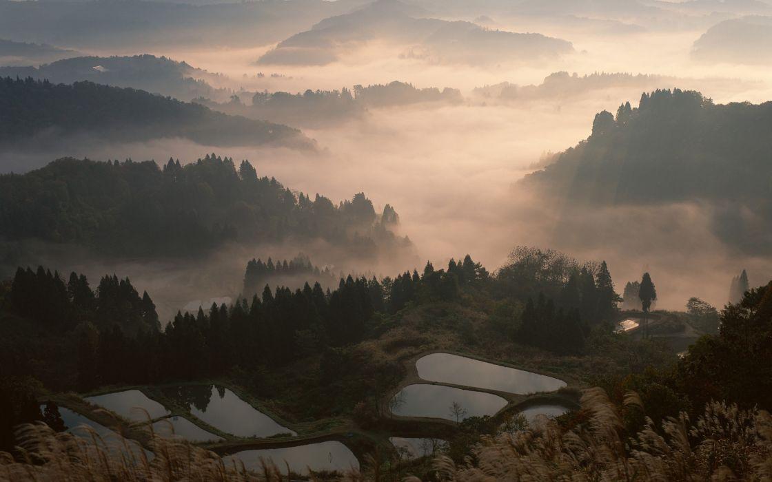 Fog in Japan wallpaper