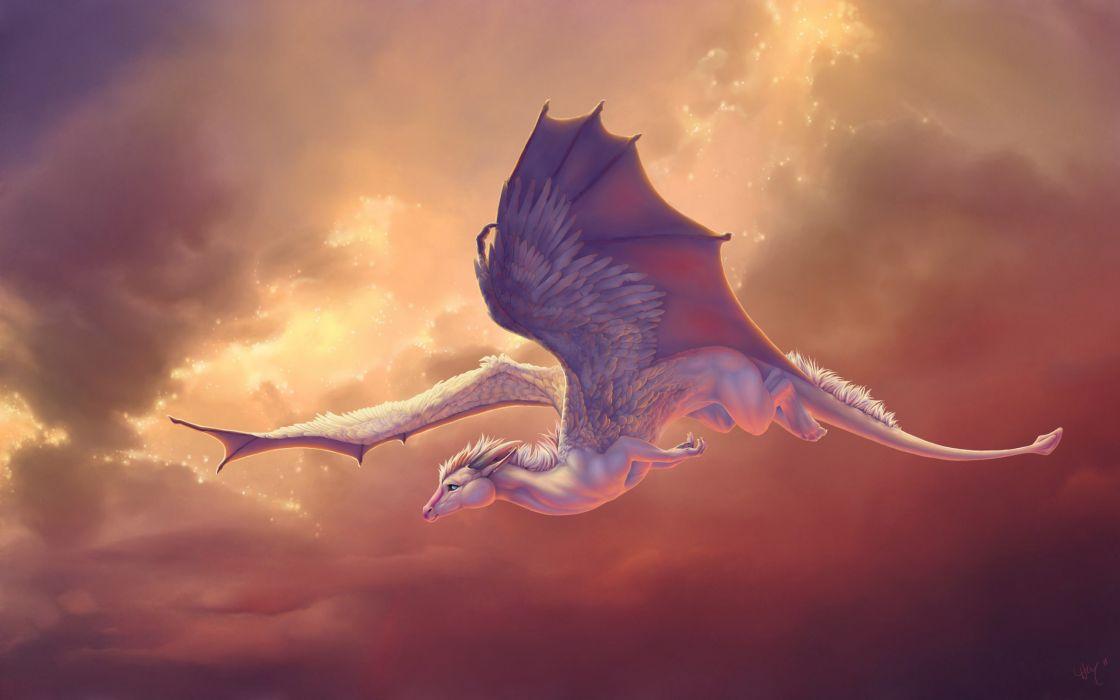 Dragon flying artwork wallpaper