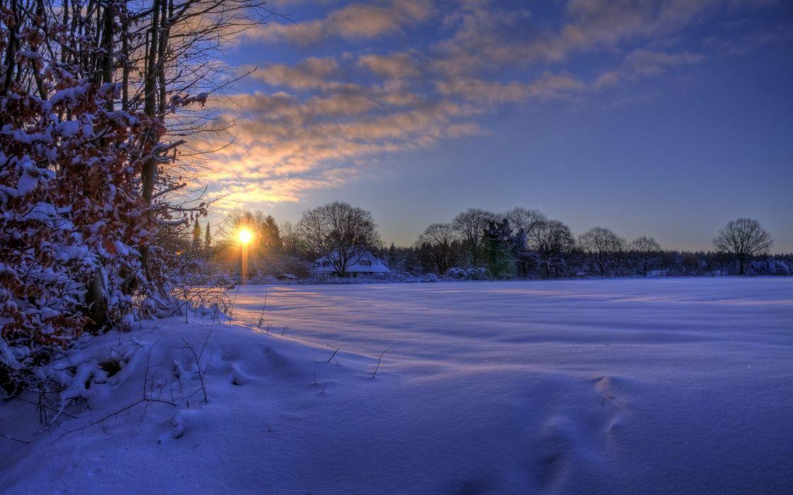 Snowed field at dusk wallpaper