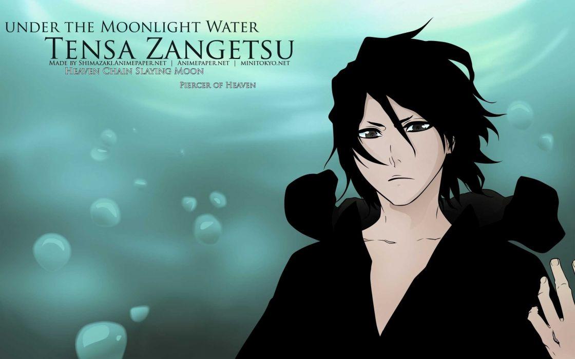 Bleach - Tensa Zangetsu wallpaper