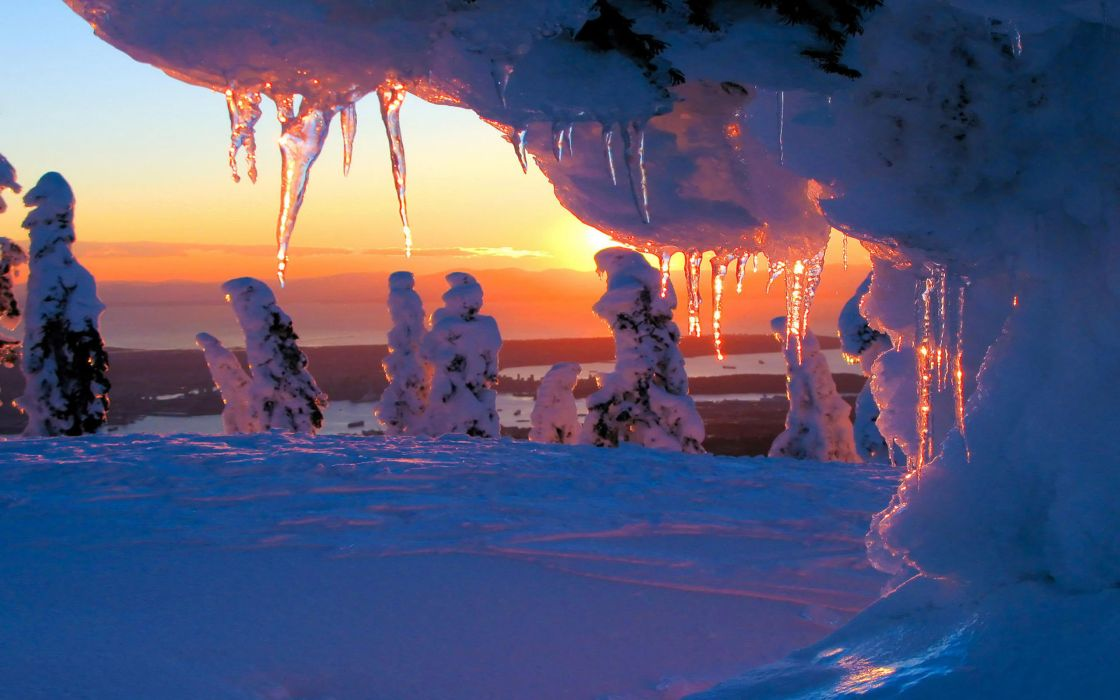 Winter bliss wallpaper