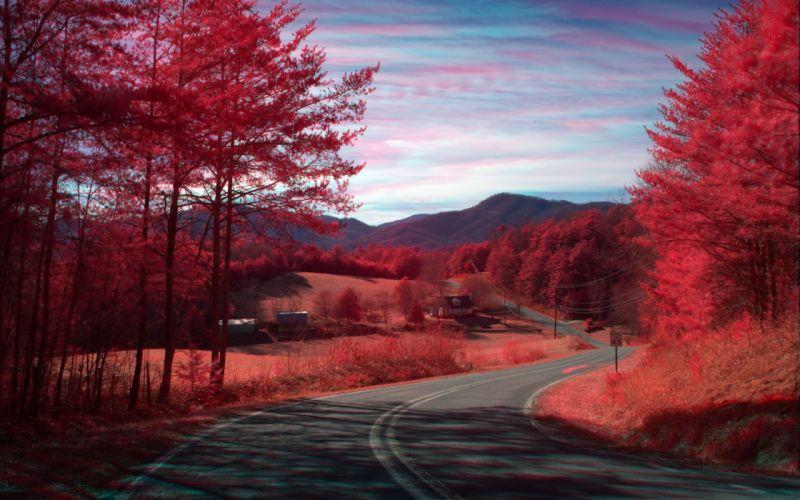 Red nature road wallpaper
