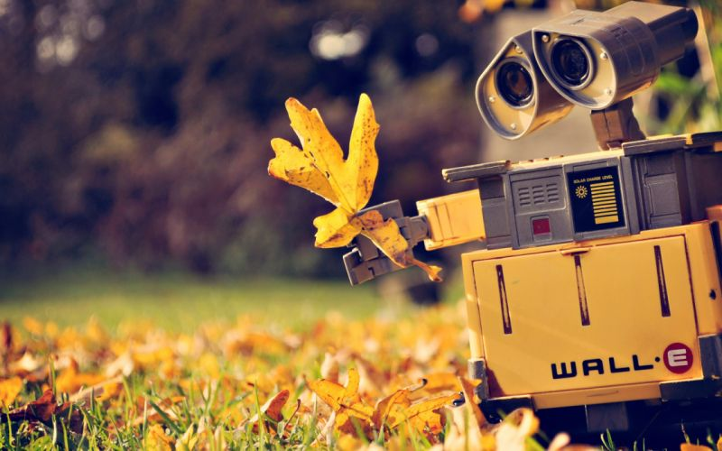 Wall-E robot autumn yellow leaf wallpaper