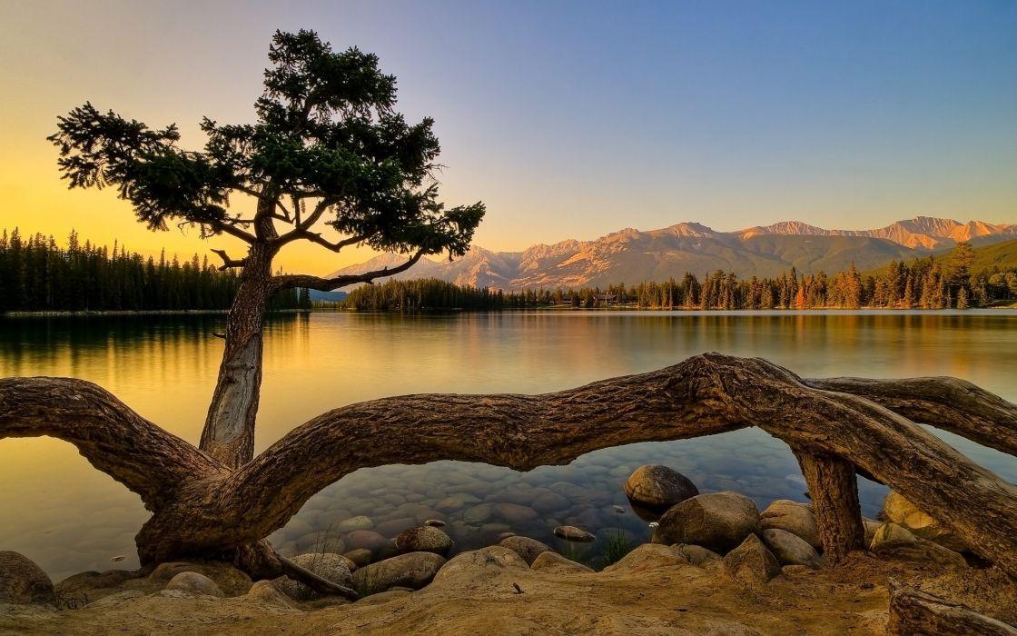Superb Summer Landscape wallpaper