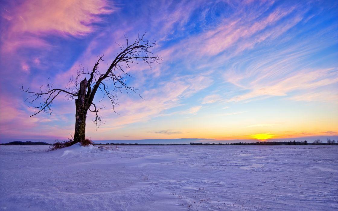 Beautiful Winter Sunset wallpaper