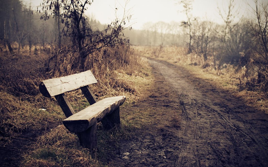 Wooden bench on an off-road route wallpaper