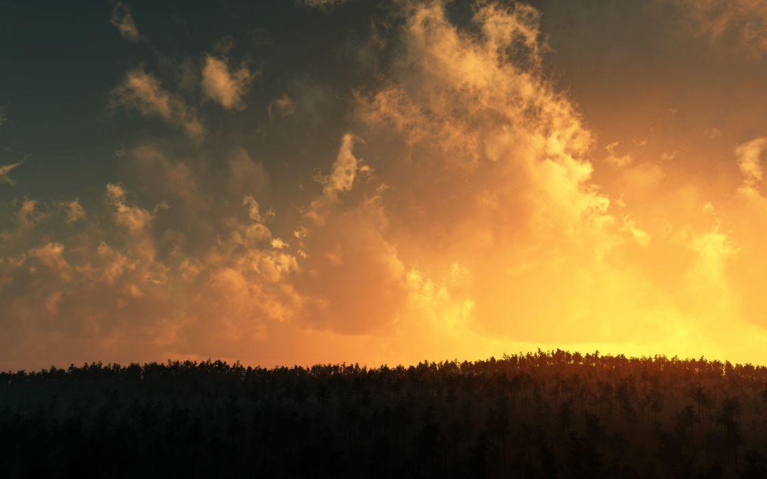 Sunset over tree tops wallpaper