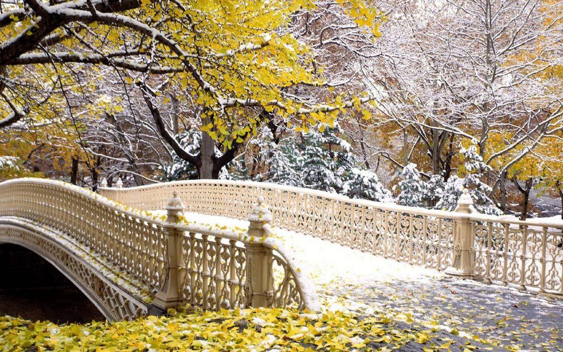 Fall central park New York wallpaper
