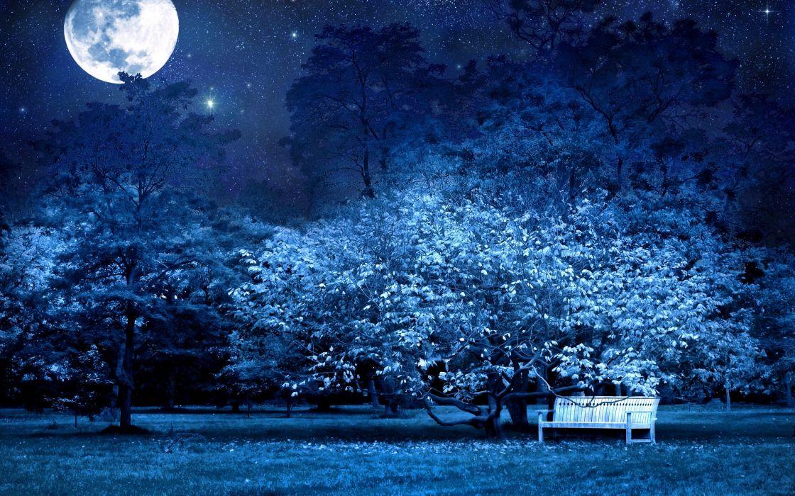 Big moon over park wallpaper