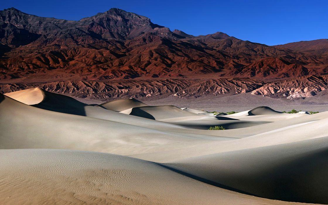 The mesquite dunes wallpaper