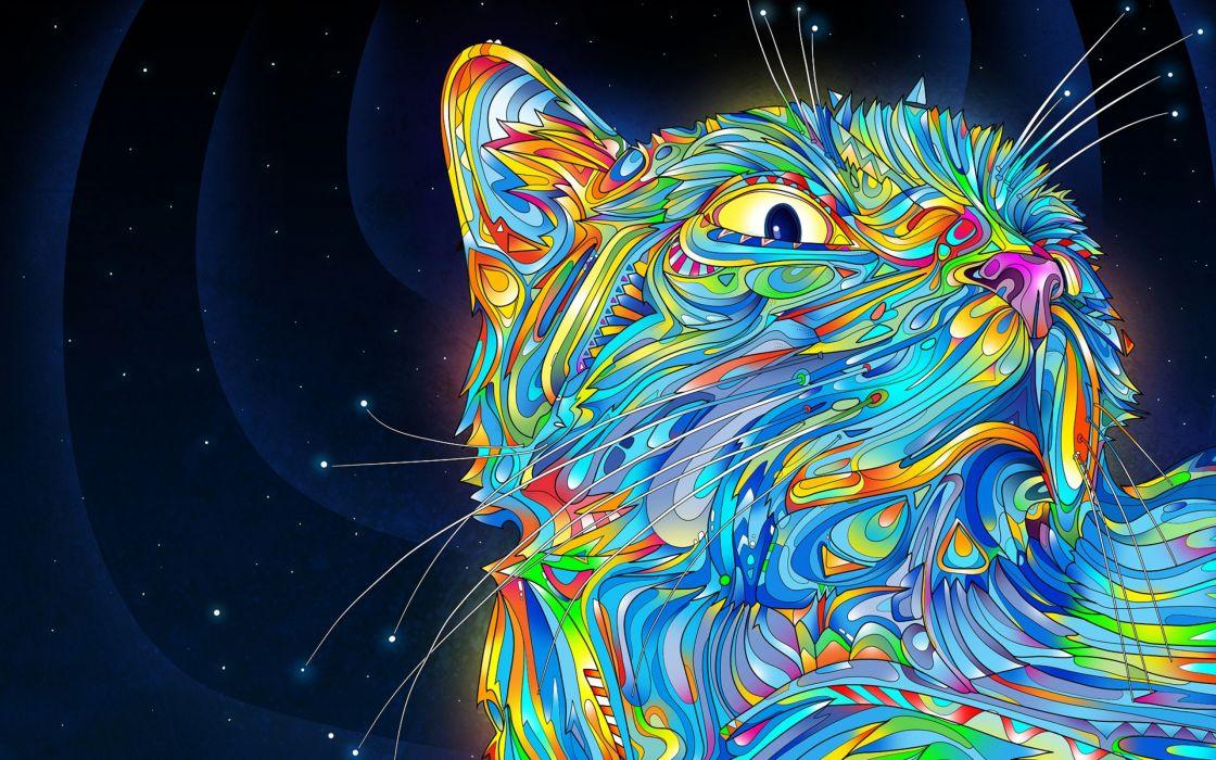 Midnight cat abstract wallpaper