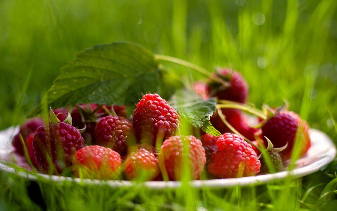 Fresh raspberry wallpaper