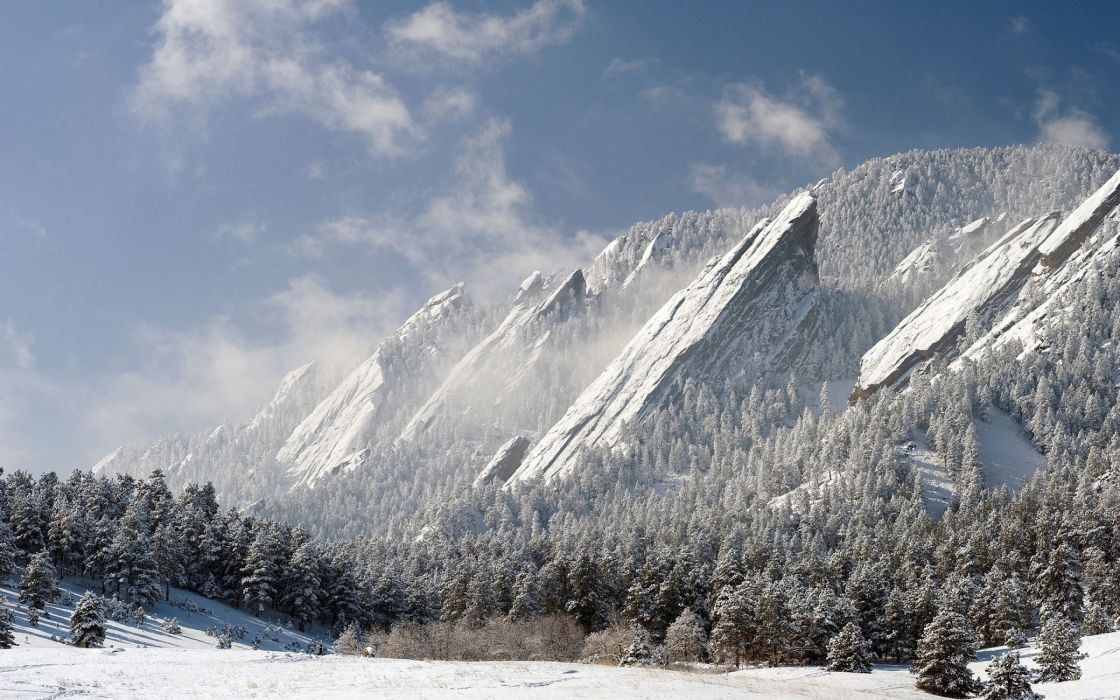 Lovely white winter wallpaper