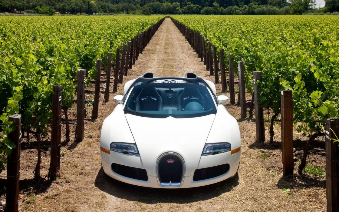 Bugatti veyron 164 grand sport 2010 in napa valley front wallpaper