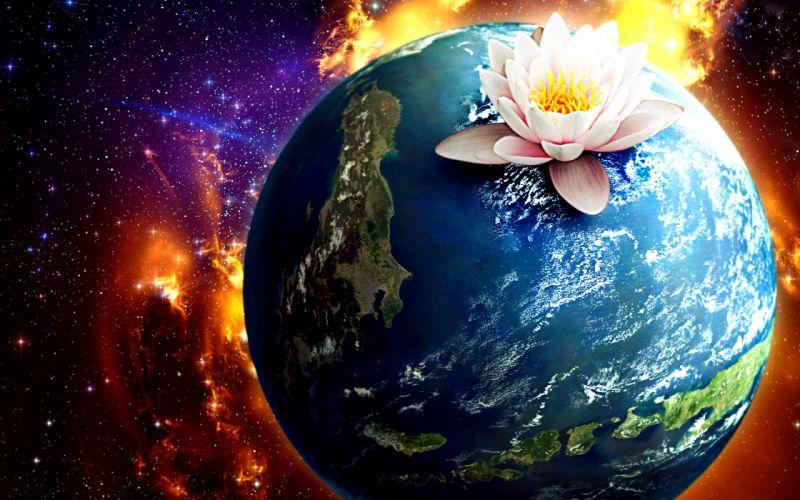 Earth flower wallpaper