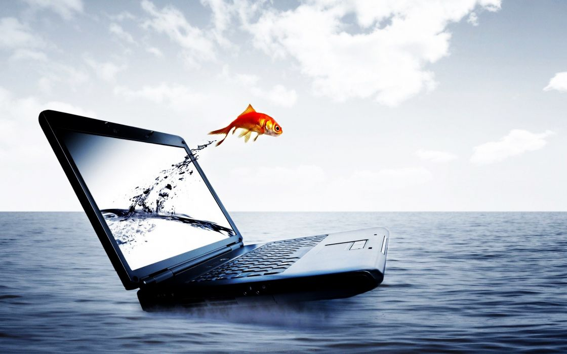 Fish jump from notebook wallpaper