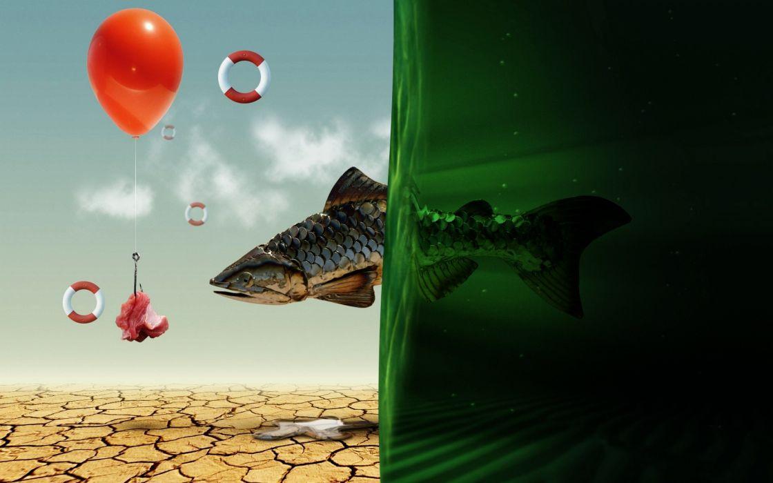 Fish dreaming wallpaper